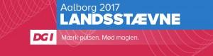 dgi-landsstaevne17-header